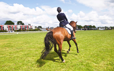 women horse helmet
